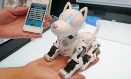 آیا این ربات جای سگ شما را میگیرد؟