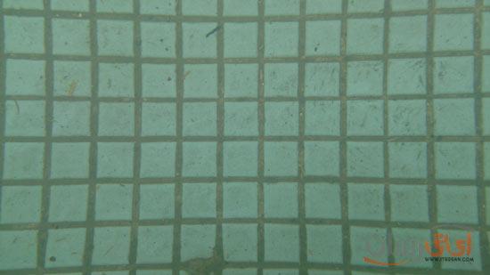 این هم تصویری که گوشی در زیر آب گرفته و فقط کاشیهای ته حوض قابل مشاهده است (حوضش ماهی نداشت!).