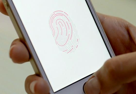 مدیر شرکت Synaptics: در آینده نزدیک شاهد عرضه گوشیهای متعدد مجهز به شناسایی اثرانگشت خواهیم بود.