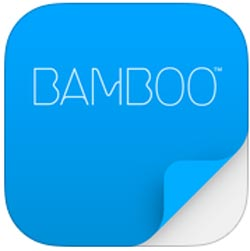 Bamboo-Paper