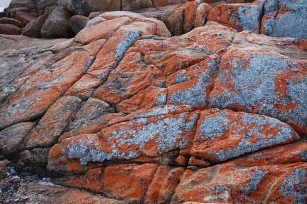 rock-wallpaper-3-640x427