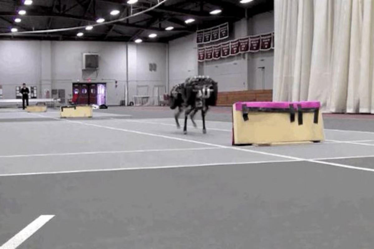 این ربات میتواند در کنار دویدن، موانع را نیز پشت سر بگذارد!