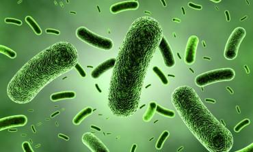مصرف زیاد ویتامین B12 باعث افزایش جوشهای صورت میشود