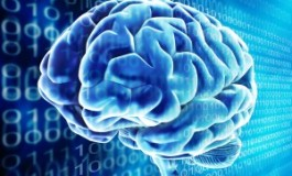 مغز رباتیک گوگل نوشتههای شما را به زبانی دیگر بازگو میکند!