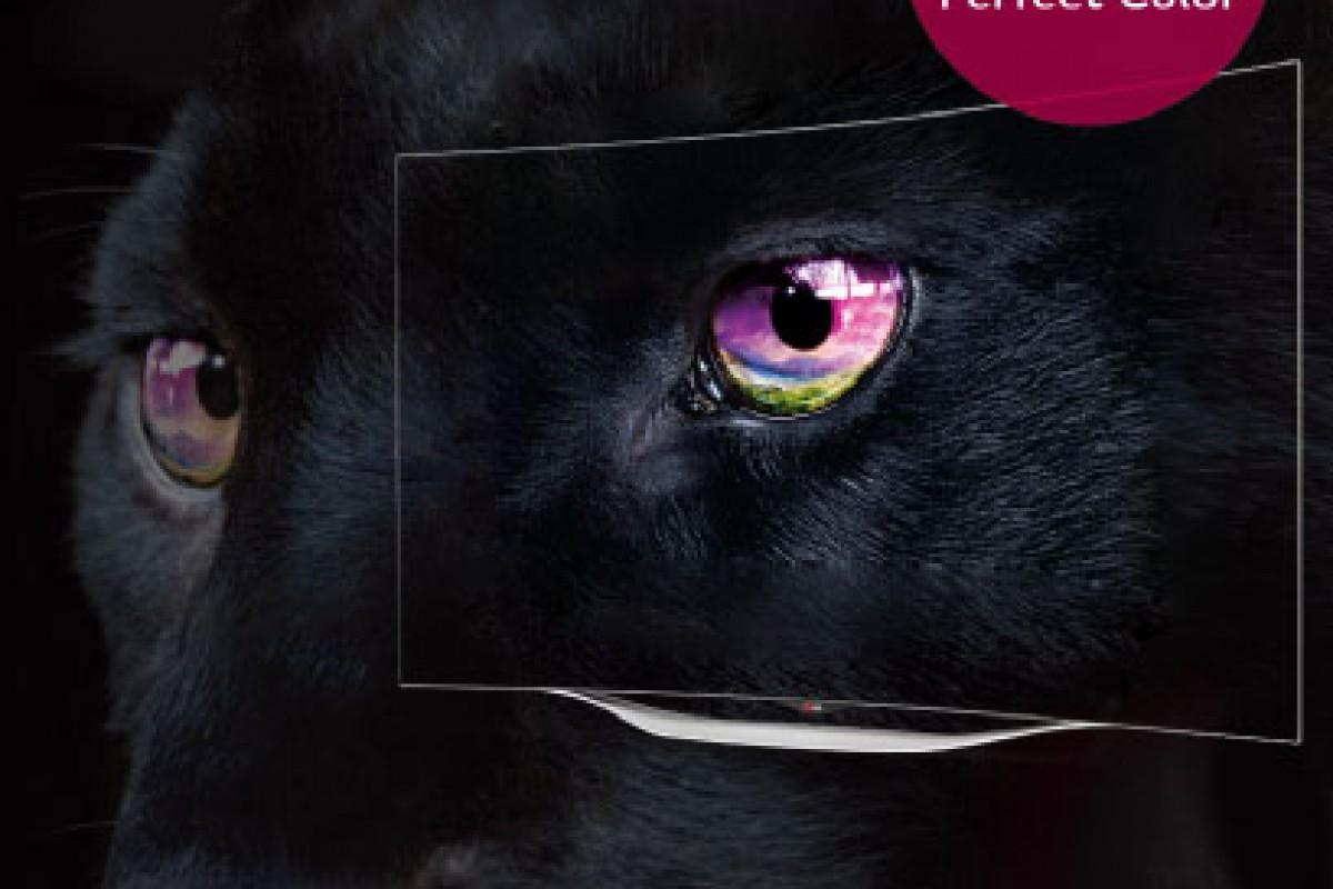 رنگهای زنده و مشکی مطلق در تلویزیونهای منحنی OLED الجی