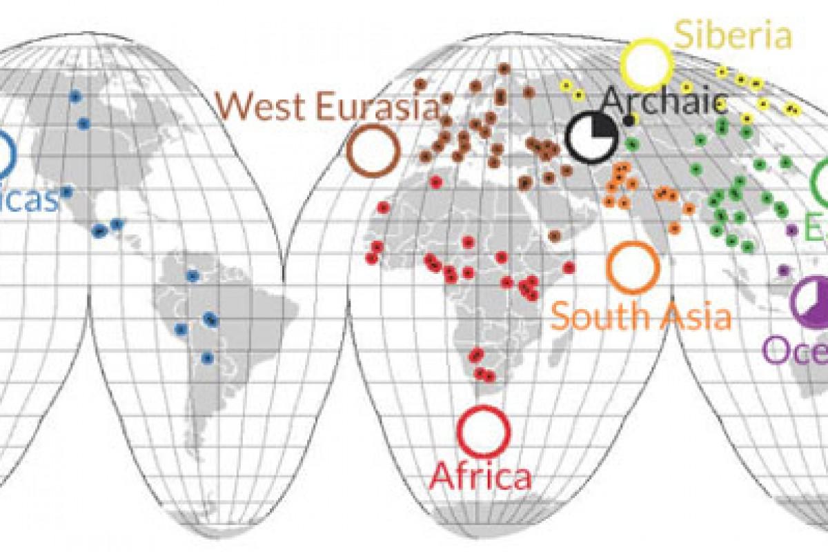انسانهای پیشین DNA بیشتری نسبت به ما داشتند!