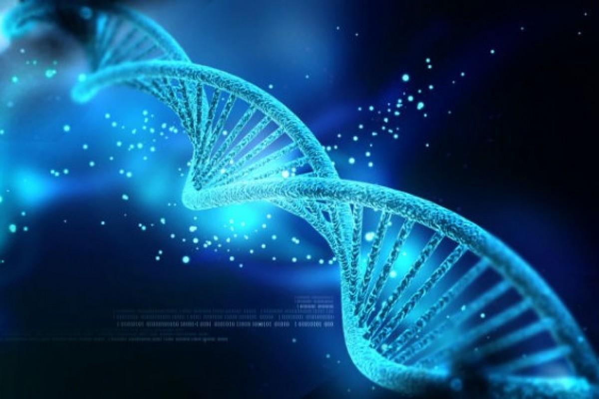 آیا DNA جایگزین هارد دیسکها میشود؟!