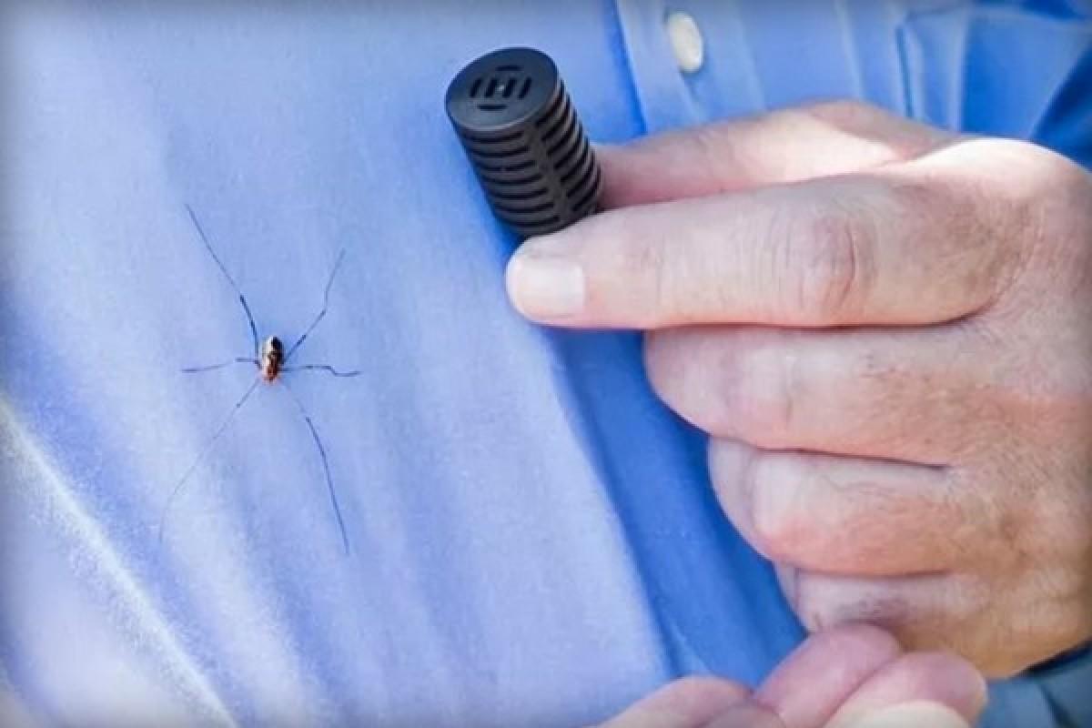 مهندسان شرکت خودروسازی فورد، حشرات و عنکبوتها را از شما فراری میدهند!