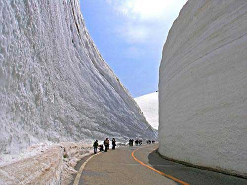 japanese-tourists-dwarfed-by-snow-drift
