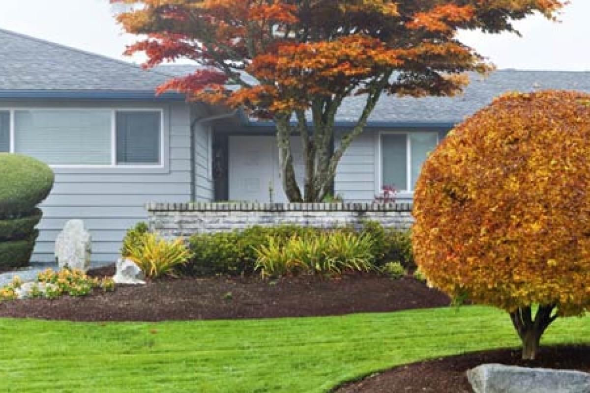 ۱۰ کار که باغچه خانه شما را در فصل پاییز برای یک عکاسی زیبا آماده میکند!