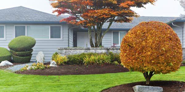 1441918723-syn-pop-1441755049-fall-mulch-yard