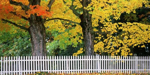 1441918907-landscape-1441754621-fall-picket-fence