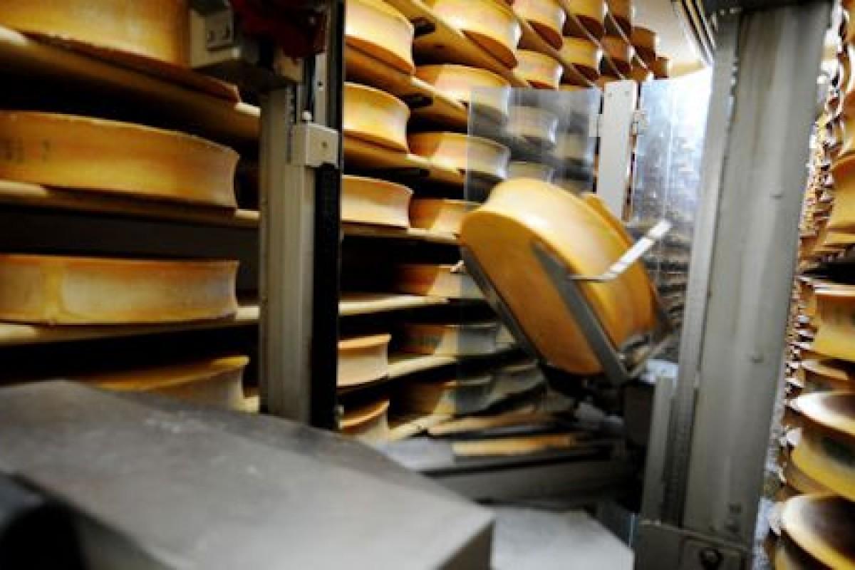 استفاده از پنیر بهعنوان سوخت در نیروگاههای فرانسه!