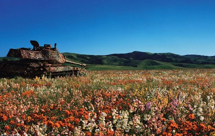 abandoned-army-tanks-that-have-become-a-part-of-nature-10