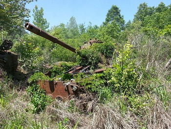 abandoned-army-tanks-that-have-become-a-part-of-nature-22