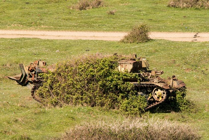 abandoned-army-tanks-that-have-become-a-part-of-nature-29