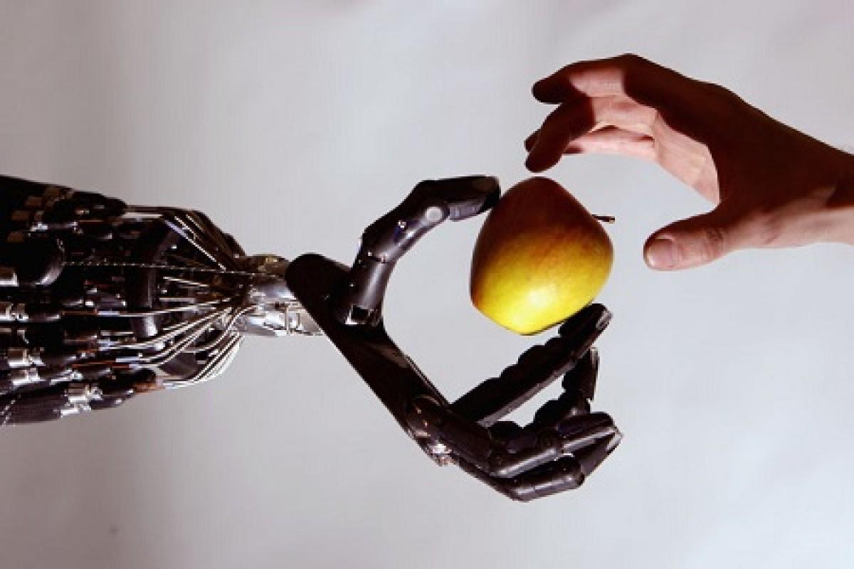روباتهایی که با لمس کردن اجسام به یادگیری میپردازند