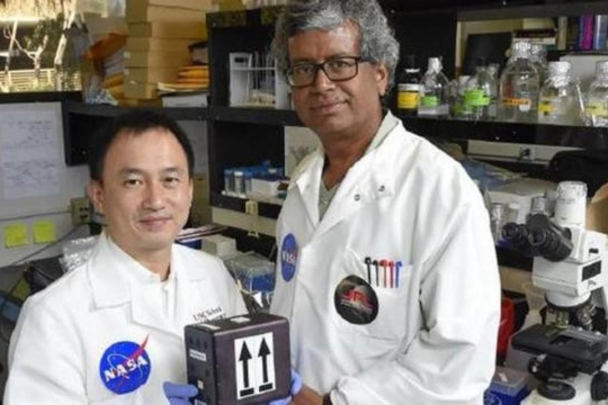 فرستادن قارچها به فضا برای کشف داروهای جدید