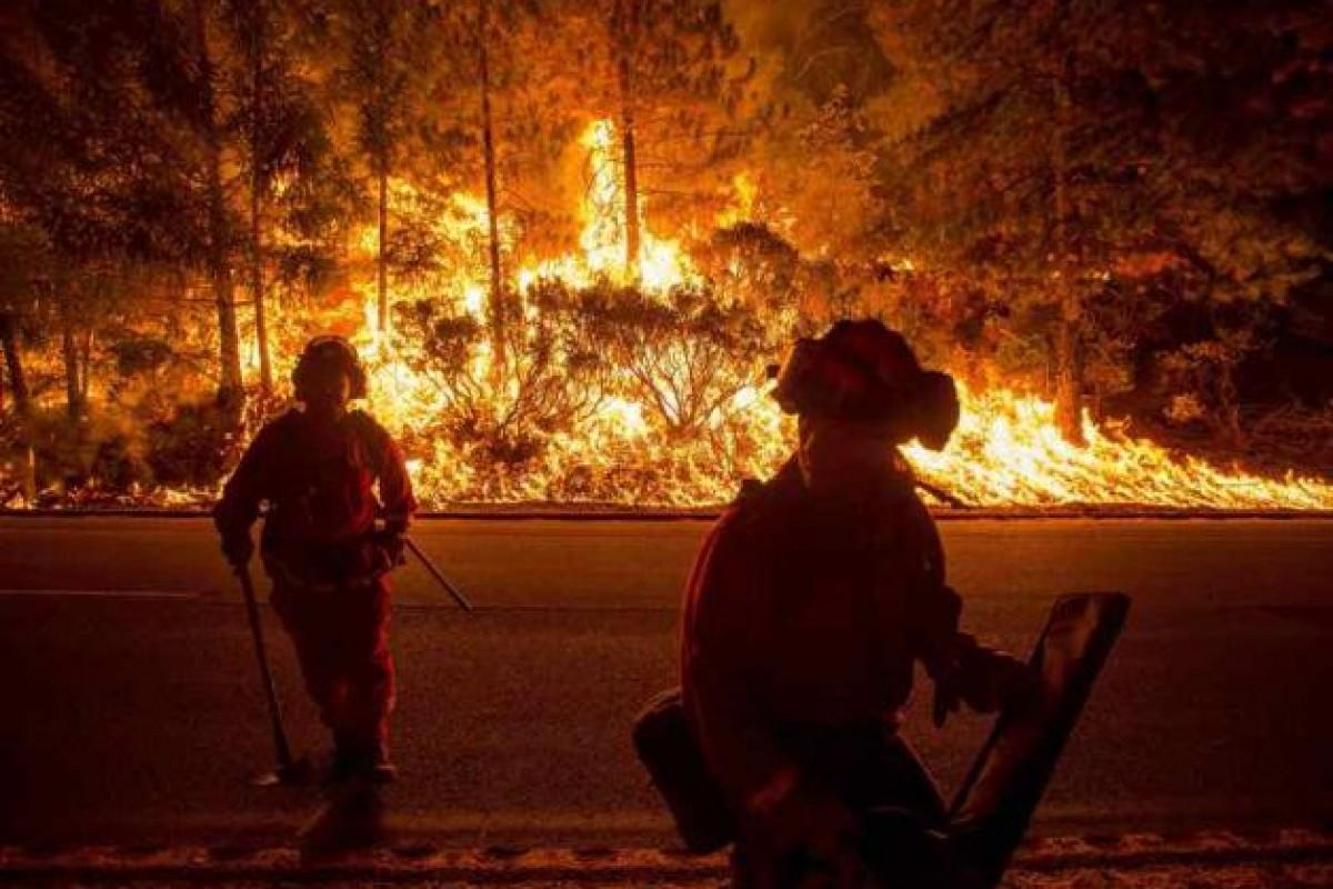 جریمه ۶۰ میلیون دلاری مردی به خاطر ایجاد آتش عمدی و گرفتن سلفی با آن!