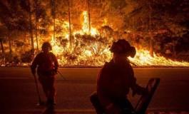 جریمه 60 میلیون دلاری مردی به خاطر ایجاد آتش عمدی و گرفتن سلفی با آن!