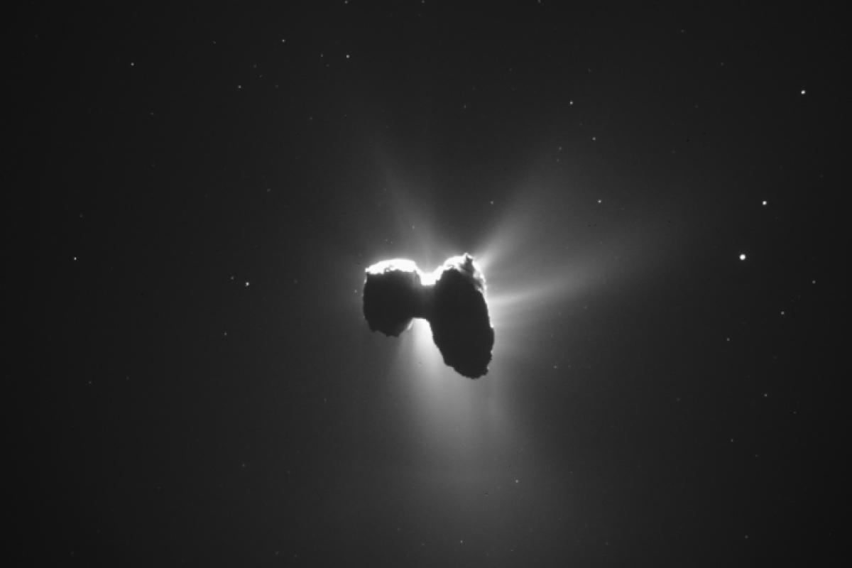 کشف مواد تشکیل دهنده حیات زمینی در سطح یک دنبالهدار توسط کاوشگر رزتا