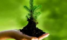 روشهایی ساده برای حفاظت از محیط زیست