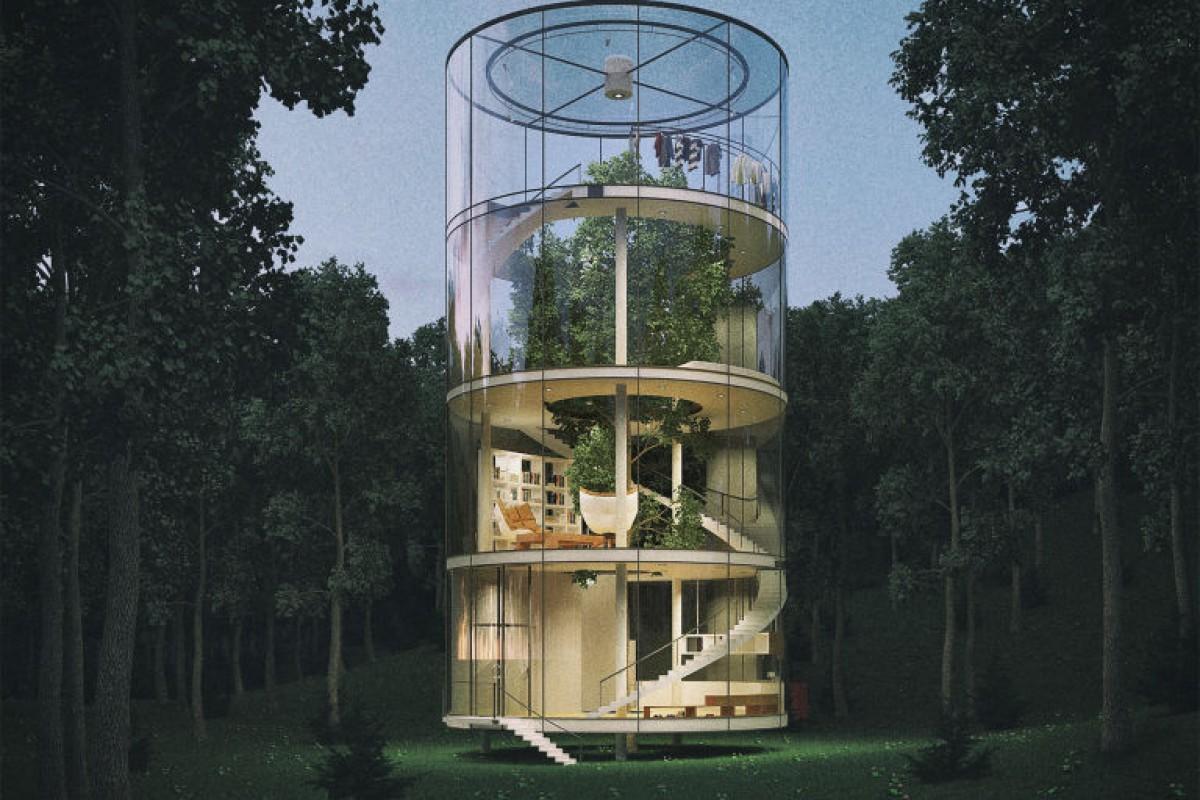 خانه شیشهای دور یک درخت!