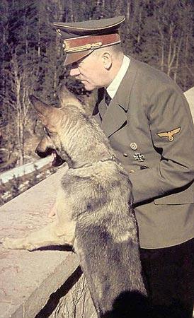 Hitler-Dog