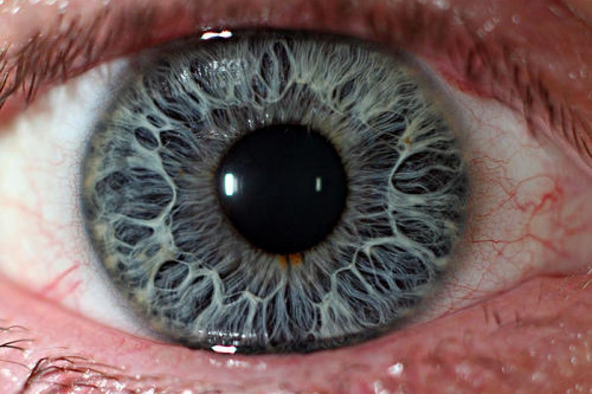 احتمالا گلکسی نوت ۷ سامسونگ به اسکنر عنبیه چشم مجهز است