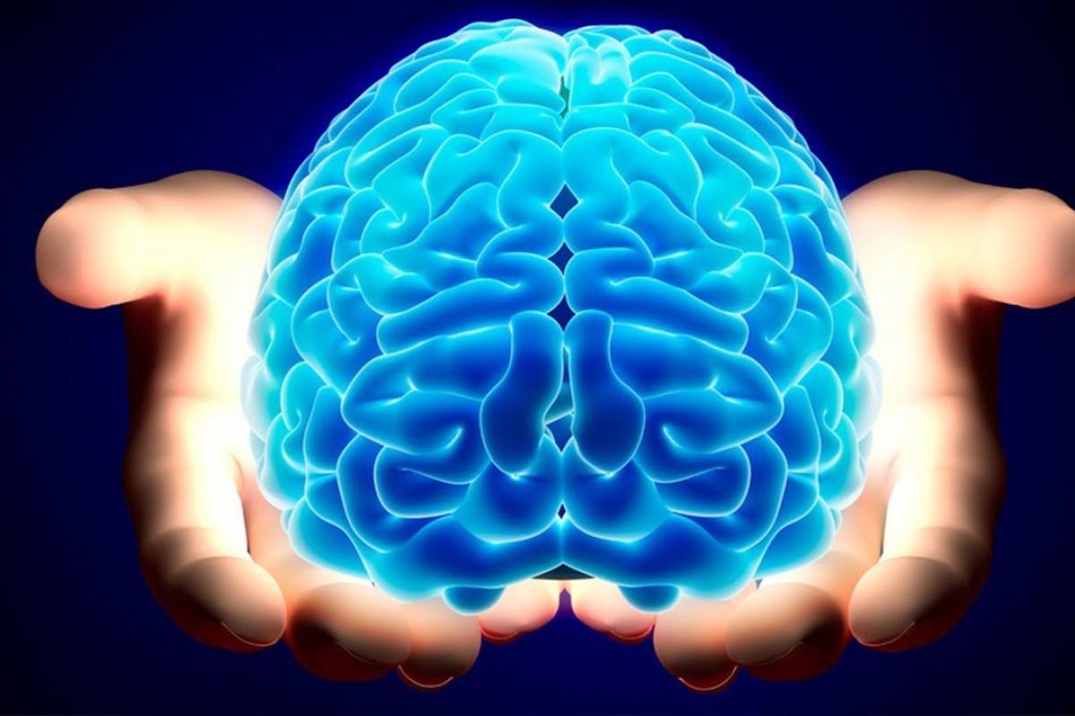 ۱۰ واقعیت جالب در مورد مغز انسان