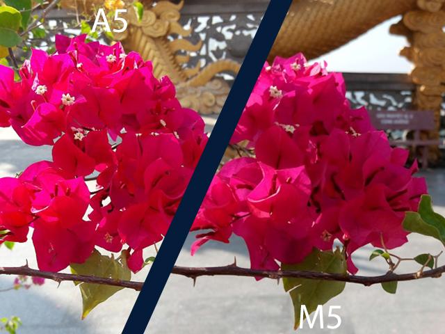 m5a5-4