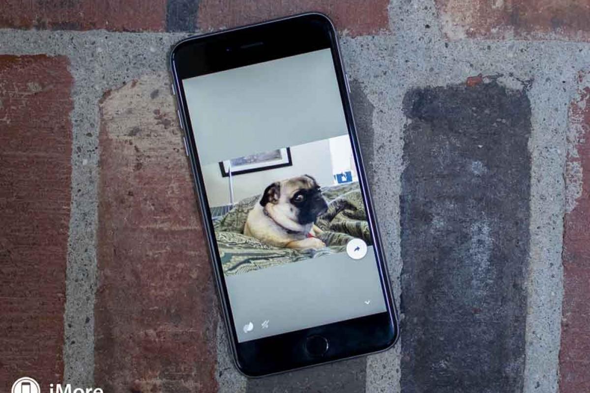 تبدیل تصاویر زنده به انیمیشنهای GIF توسط اپلیکیشن Motion Stills