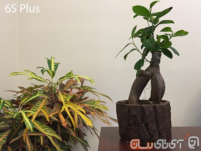 ۶SPlus-Camera (3)
