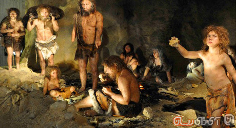Neanderthals-Might-Have-Been-Cannibals-Fossil-Evidence-Indicates-478444-2