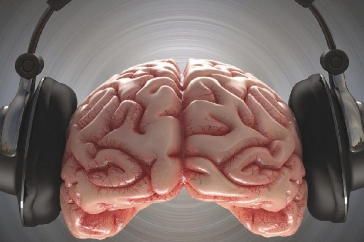 با گوش دادن به موسیقی در حین کار چه اتفاقی برای ذهن ما میافتد؟!