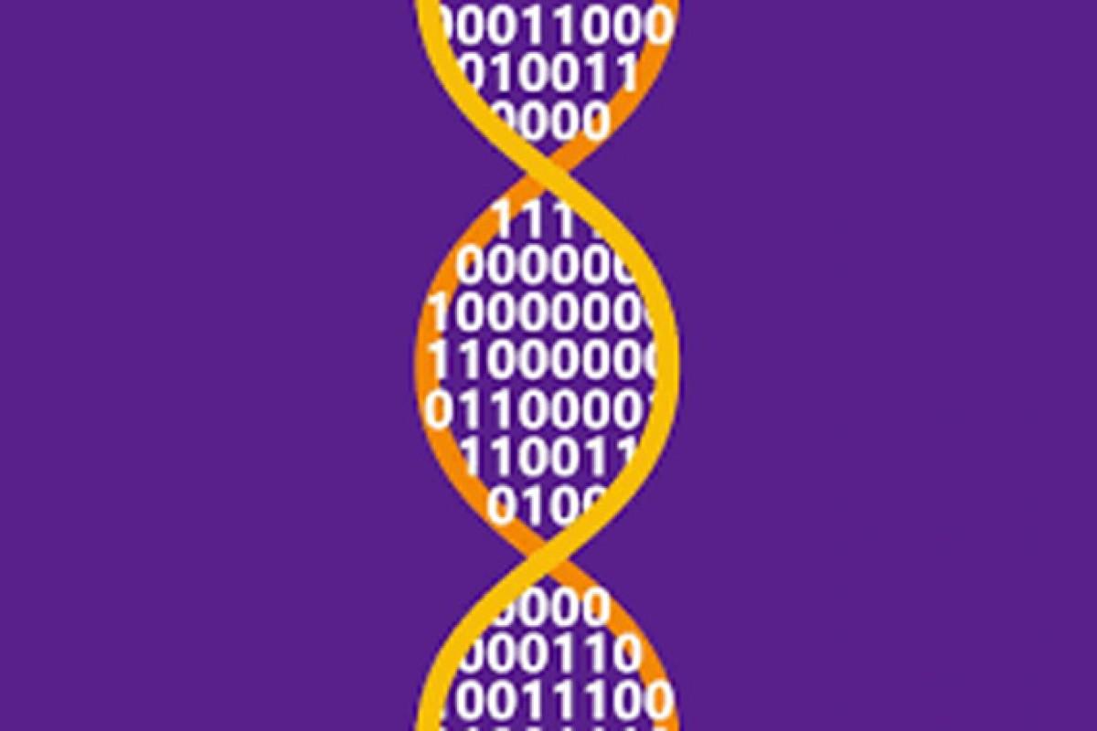 مایکروسافت با همکاری دانشگاه واشنگتن، رکورد ذخیره سازی اطلاعات در DNA را شکاند!