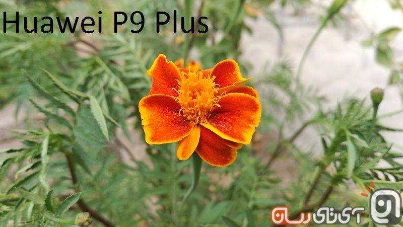 P9+ Camera