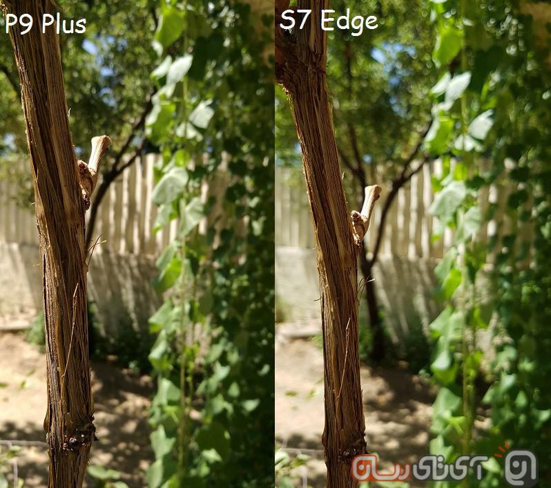 P9 Plus VS S7 Edge (4)