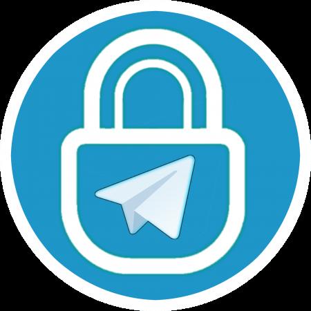 org.securetelegram.messenger