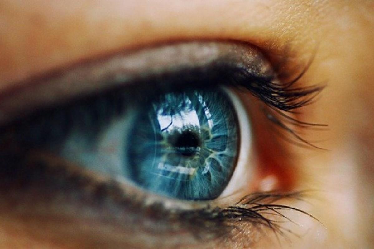 محققان و کشف حرکت جدیدی از چشم