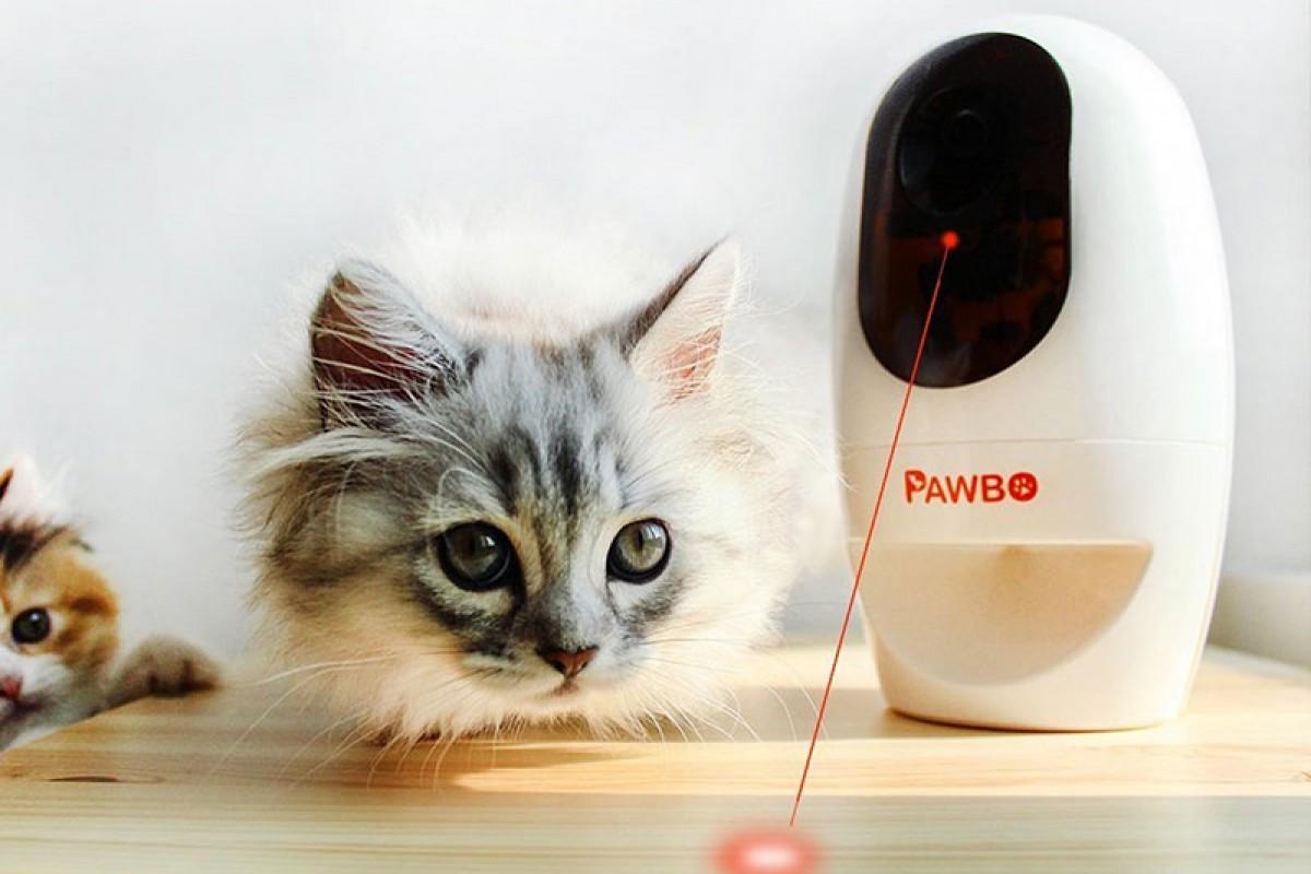 ایسر و معرفی چند گجت جدید از سری Pawbo برای کنترل حیوانات خانگی