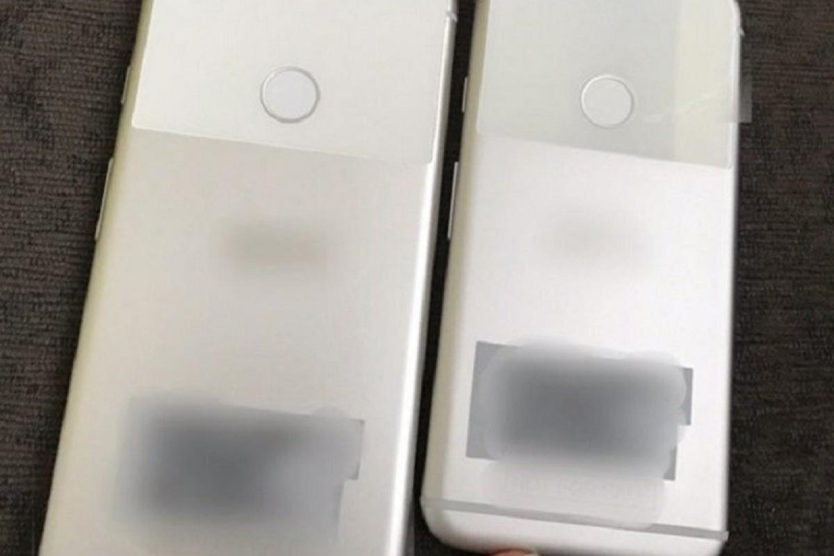 فاش شدن تصاویر واقعی از گوگل پیکسل و پیکسل XL