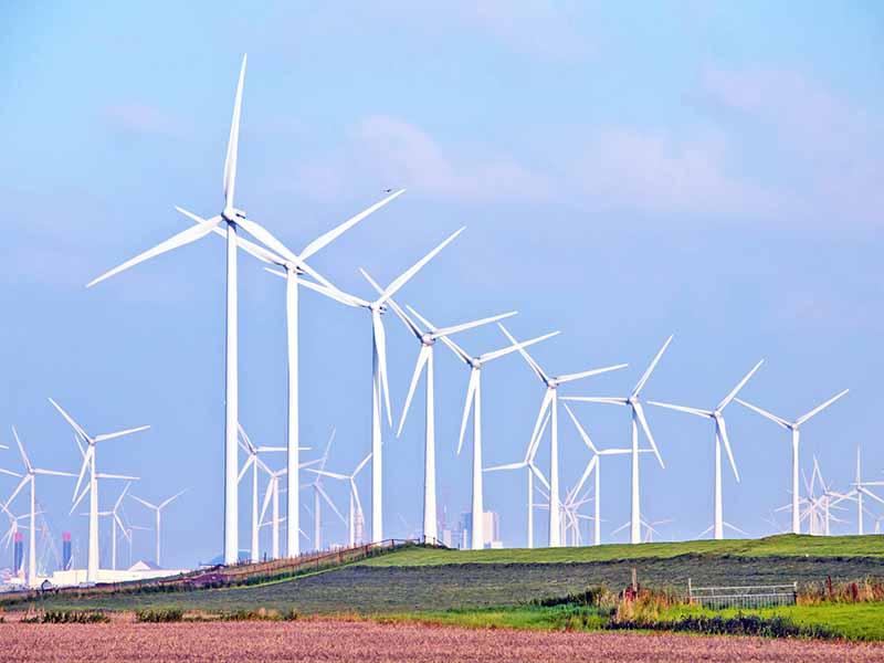 ۱-txu-energy-wind-farm-texas-free-electricity