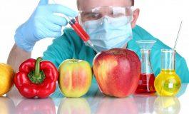 استفاده از غذاهای تغییر ژنتیکی داده شده از چه زمانی آغاز شد؟!