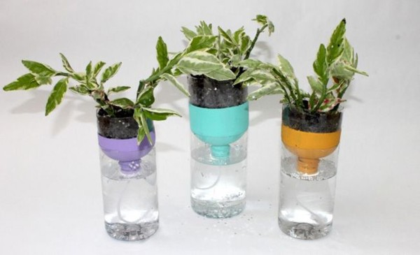 self-watering-bottle-garden-jpg-838x0_q80