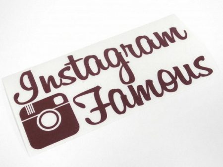 a344_-_instagram_famous-625x1000