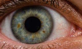 نیکون با همکاری شرکت Verily به مبارزه با مشکلات بینایی ناشی از دیابت میرود