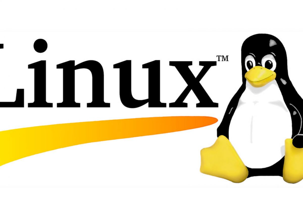 آموزش نصب لینوکس به زبان ساده