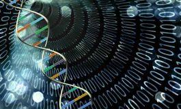 رایانههای مبتنی بر DNA چگونه کار خواهند کرد؟