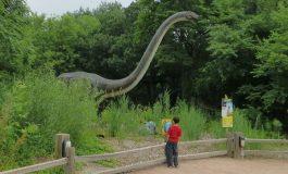 آیا ممکن است دایناسورها هنوز هم در جایی از دنیا زندگی کنند؟